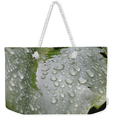 Weekender Tote Bag featuring the photograph Leafy Greens by Tiffany Erdman