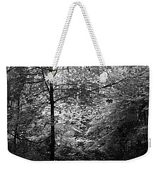 Weekender Tote Bag featuring the photograph Light In The Woods by Kathleen Grace