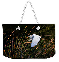 Weekender Tote Bag featuring the photograph Little Blue Heron Before The Change To Blue by Steven Sparks