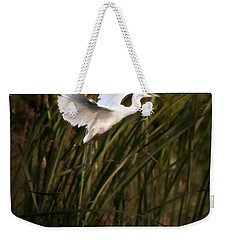 Weekender Tote Bag featuring the photograph Little Blue Heron On Approach by Steven Sparks