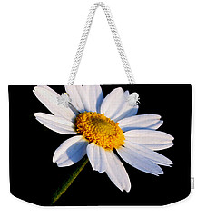 Weekender Tote Bag featuring the photograph Little Daisy by Karen Harrison