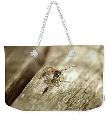Weekender Tote Bag featuring the photograph Little Jumper In Sepia by JD Grimes