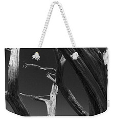 Weekender Tote Bag featuring the photograph Lone Tree by David Gleeson