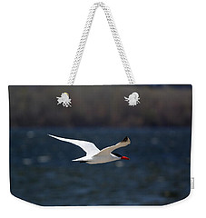Weekender Tote Bag featuring the photograph Long Haul Flight by Ramabhadran Thirupattur