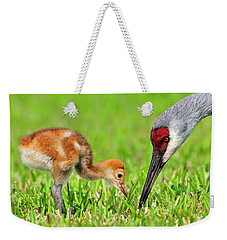Looking For Bugs Weekender Tote Bag