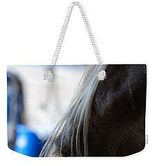Weekender Tote Bag featuring the photograph Looking Forward by Jennifer Ancker
