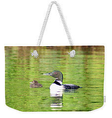 Loons Big And Small Weekender Tote Bag by Steven Clipperton