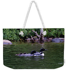 Loons With Twins 2 Weekender Tote Bag by Steven Clipperton