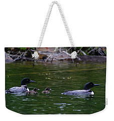 Loons With Twins Weekender Tote Bag by Steven Clipperton