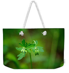 Weekender Tote Bag featuring the photograph Lost But Not Forgotten by Vicki Pelham