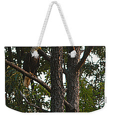 Weekender Tote Bag featuring the photograph Majestic Bald Eagle by Clayton Bruster
