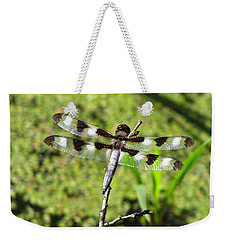 Weekender Tote Bag featuring the photograph Male Twelve-spotted Dragonfly by Maciek Froncisz