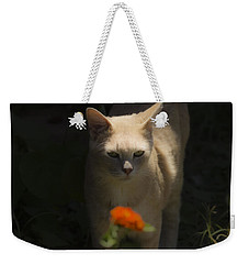Many Moods Of Kitty Weekender Tote Bag by Kim Henderson