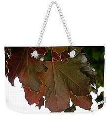 Weekender Tote Bag featuring the photograph Maple 2 by Tikvah's Hope