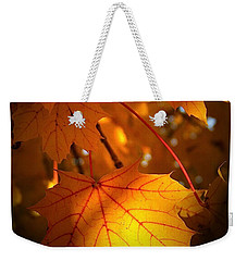 Maple At First Light Weekender Tote Bag