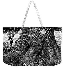 Weekender Tote Bag featuring the photograph Maple by Dan Wells