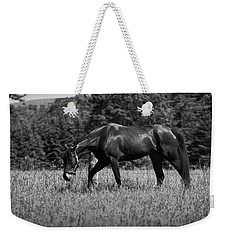 Weekender Tote Bag featuring the photograph Mare In Field by Davandra Cribbie
