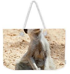 Meerkat Weekender Tote Bag by Fabrizio Troiani