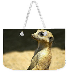Meerkat Mother And Baby Weekender Tote Bag