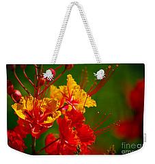 Mexican Bird Of Paradise Weekender Tote Bag