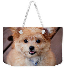 Weekender Tote Bag featuring the photograph Mi-ki Puppy by Angie Tirado