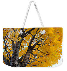 Moab Color Splash Weekender Tote Bag