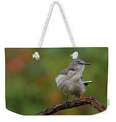 Mocking Bird Perched In The Wind Weekender Tote Bag by Daniel Reed