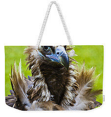 Monk Vulture 4 Weekender Tote Bag by Heiko Koehrer-Wagner