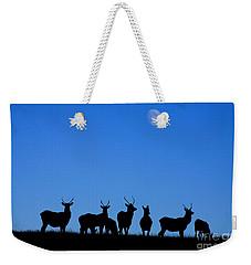 Moonlighting Weekender Tote Bag