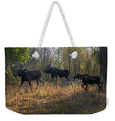 Moose Family Weekender Tote Bag by Ronald Lutz