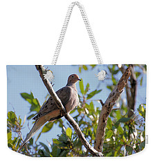 Weekender Tote Bag featuring the photograph Morning Dove by Rosalie Scanlon