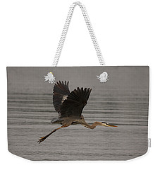 Weekender Tote Bag featuring the photograph Morning Flight by Eunice Gibb