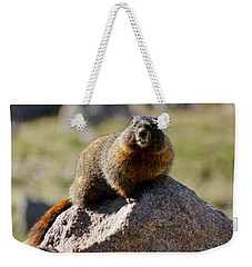 Morning Marmot Weekender Tote Bag