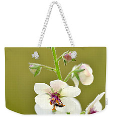 Weekender Tote Bag featuring the photograph Moth Mullein by JD Grimes