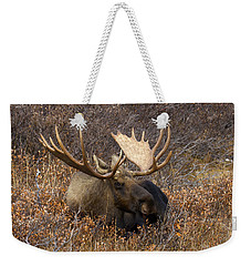 Weekender Tote Bag featuring the photograph Much Needed Rest by Doug Lloyd