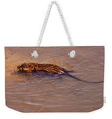 Muskrat Swiming Weekender Tote Bag
