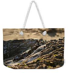 Mussels Sunset Weekender Tote Bag