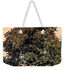 Weekender Tote Bag featuring the photograph My Friend The Tree by Juergen Weiss