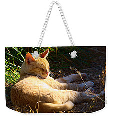Napping Orange Cat Weekender Tote Bag