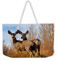 Weekender Tote Bag featuring the photograph Nature's Gentle Beauties by Lynn Bauer