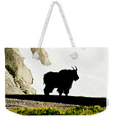 Weekender Tote Bag featuring the photograph Nature's Silhouette by Colleen Coccia