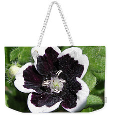 Weekender Tote Bag featuring the photograph Nemophilia Named Penny Black by J McCombie