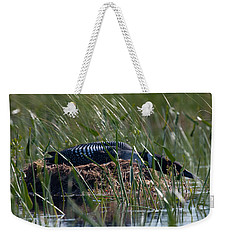 Weekender Tote Bag featuring the photograph Nesting Loon by Brent L Ander