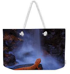 Newt Falls Weekender Tote Bag