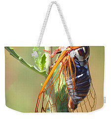 Noisy Cicada Weekender Tote Bag by Shane Bechler