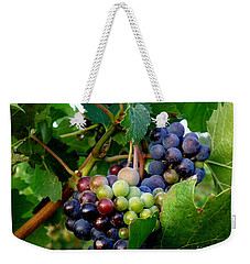 Weekender Tote Bag featuring the photograph Not Yet by Lainie Wrightson