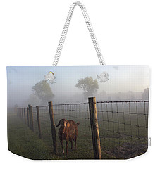 Weekender Tote Bag featuring the photograph Nubian Goat by Lynn Palmer