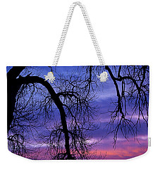 Weekender Tote Bag featuring the photograph Obeisance by Jim Garrison
