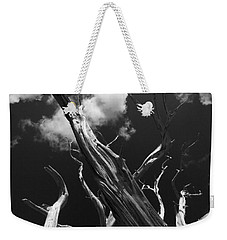Weekender Tote Bag featuring the photograph Old Tree by David Gleeson