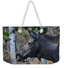 Weekender Tote Bag featuring the photograph On Alert by Doug Lloyd